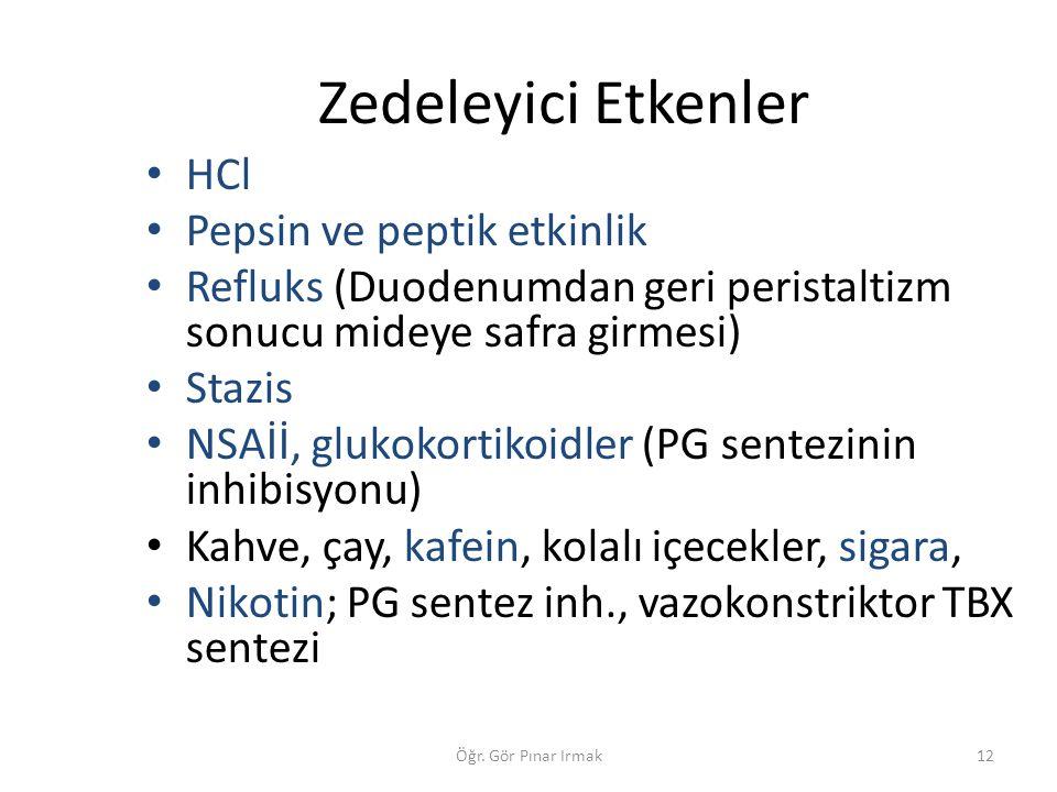 Zedeleyici Etkenler HCl Pepsin ve peptik etkinlik