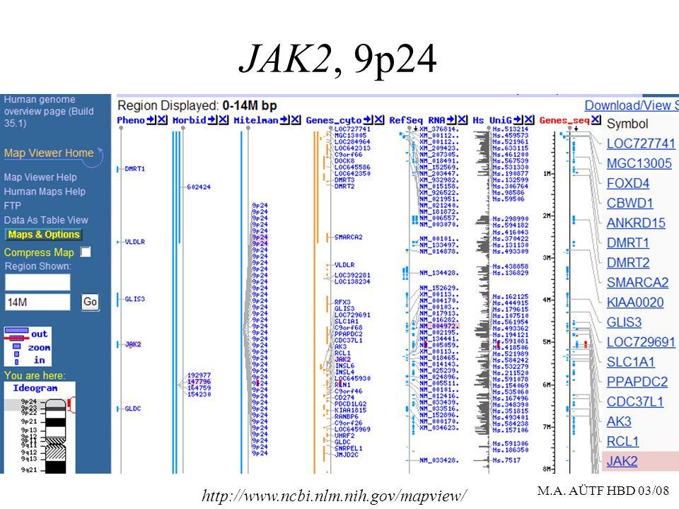 JAK2, 9p24 http://www.ncbi.nlm.nih.gov/mapview/ M.A. AÜTF HBD 03/08