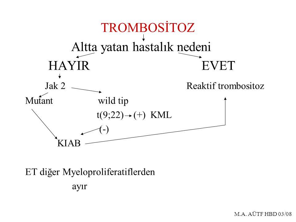 Altta yatan hastalık nedeni HAYIR EVET Jak 2 Reaktif trombositoz
