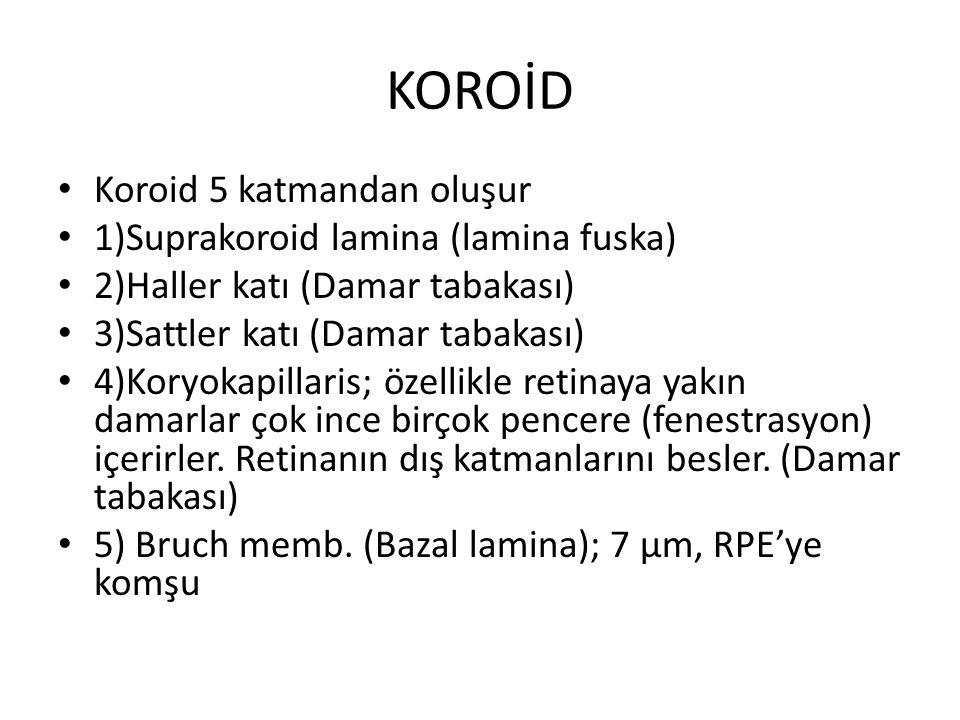 KOROİD Koroid 5 katmandan oluşur 1)Suprakoroid lamina (lamina fuska)