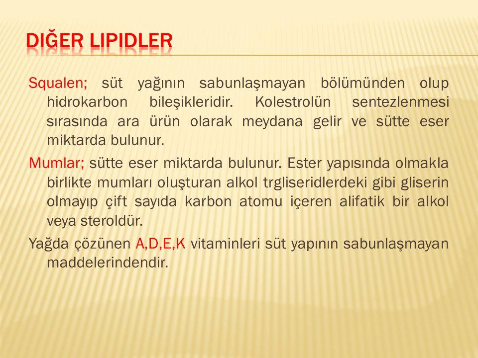Diğer lipidler