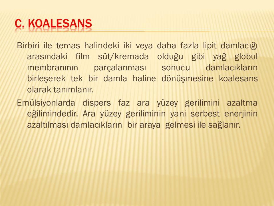 c. Koalesans