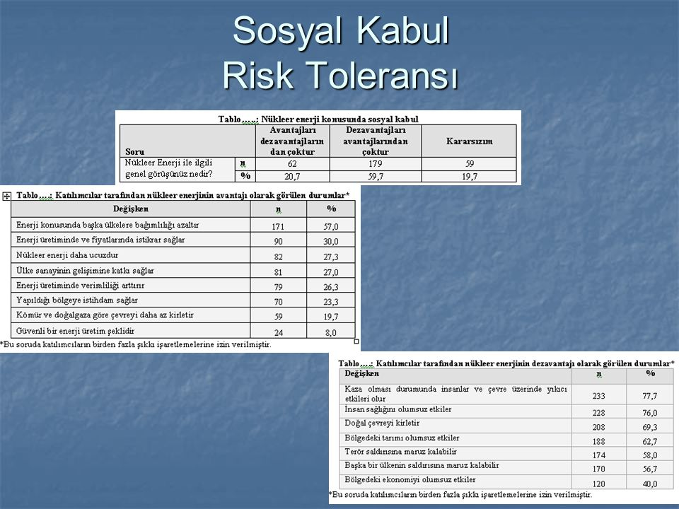 Sosyal Kabul Risk Toleransı
