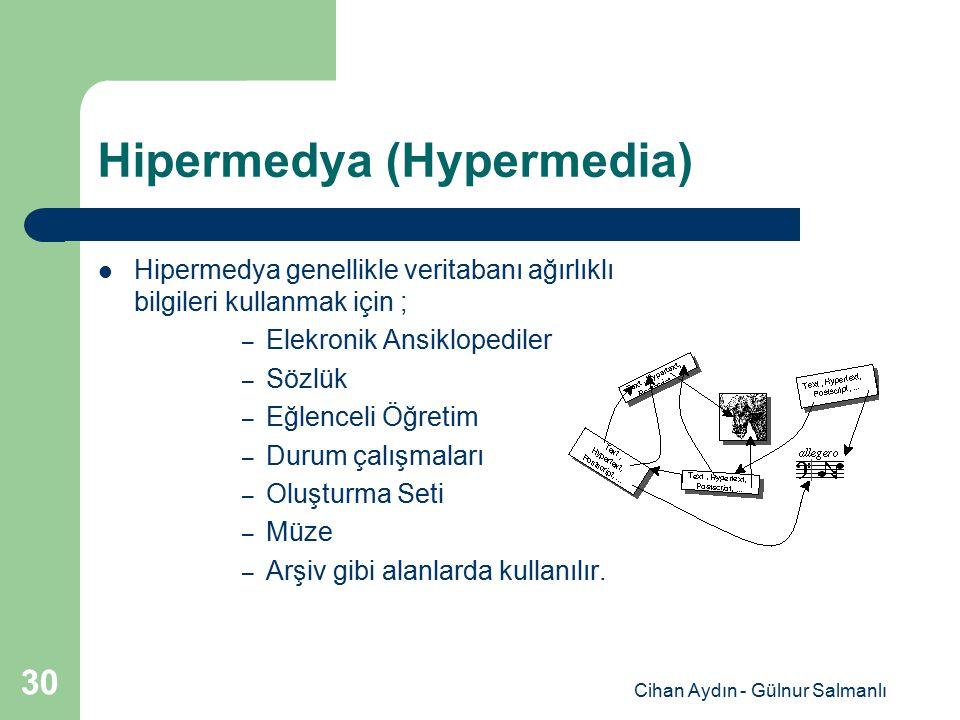 Hipermedya (Hypermedia)