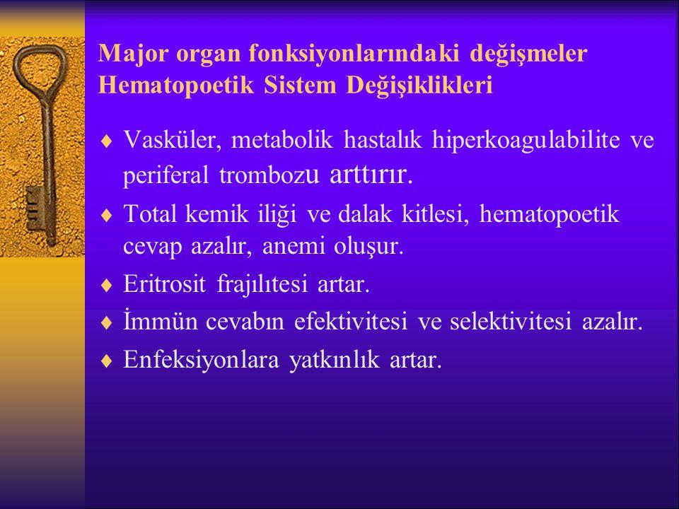 Major organ fonksiyonlarındaki değişmeler Hematopoetik Sistem Değişiklikleri