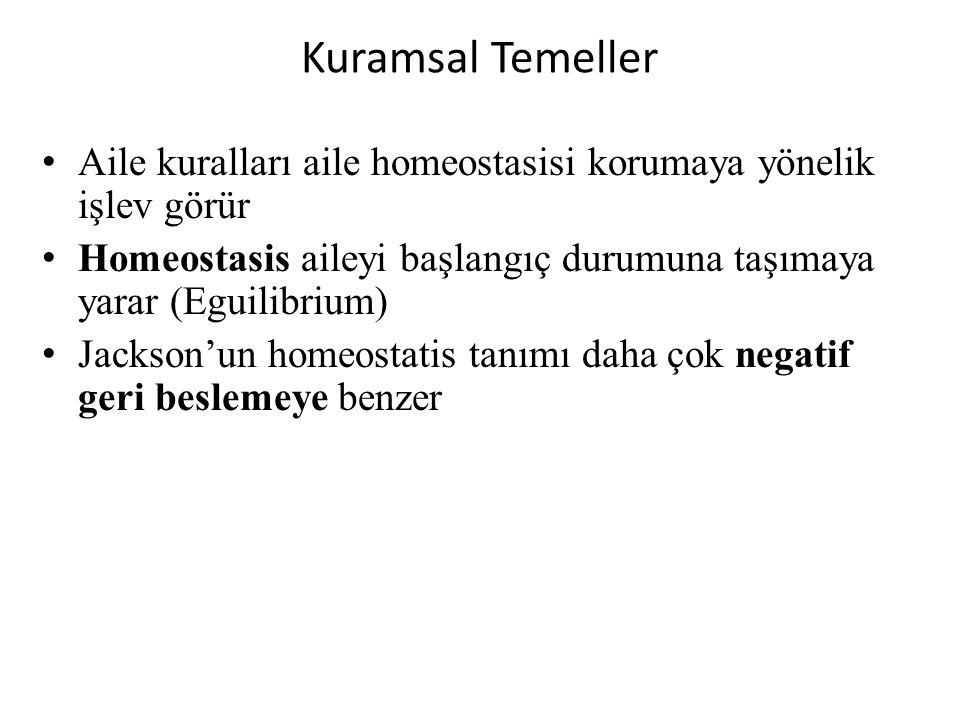 Kuramsal Temeller Aile kuralları aile homeostasisi korumaya yönelik işlev görür. Homeostasis aileyi başlangıç durumuna taşımaya yarar (Eguilibrium)
