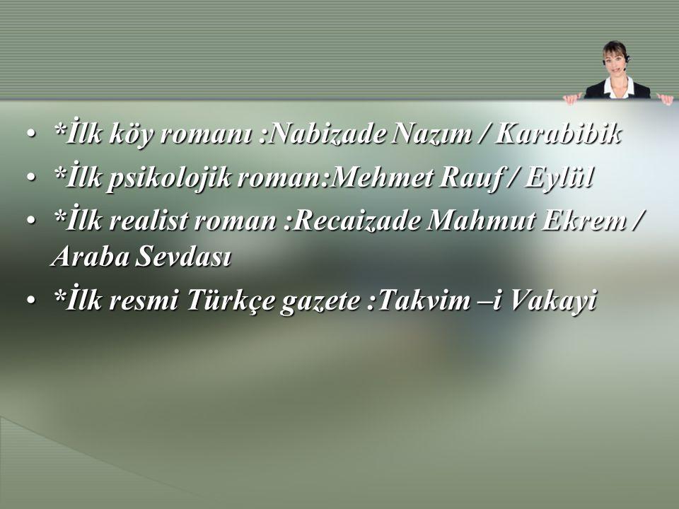 *İlk köy romanı :Nabizade Nazım / Karabibik