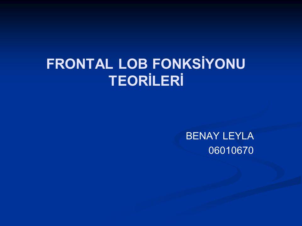 FRONTAL LOB FONKSİYONU TEORİLERİ