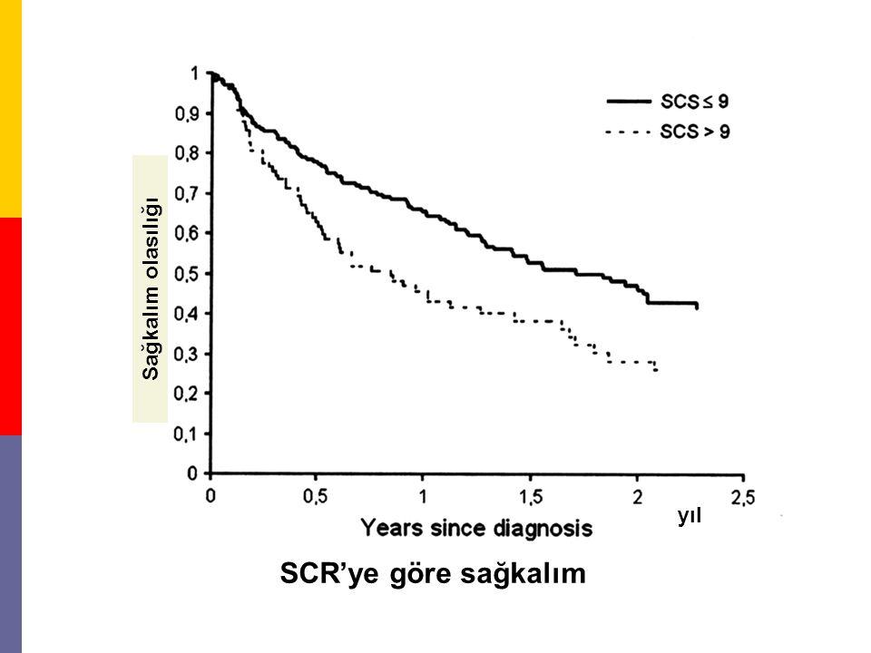 Sağkalım olasılığı yıl SCR'ye göre sağkalım