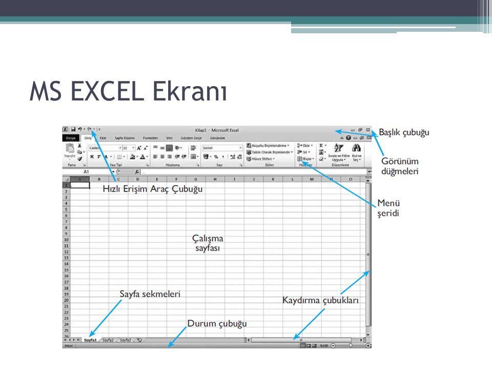 MS EXCEL Ekranı