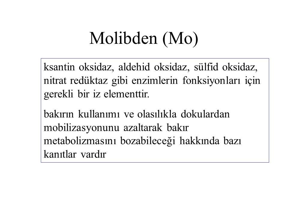 Molibden (Mo) ksantin oksidaz, aldehid oksidaz, sülfid oksidaz, nitrat redüktaz gibi enzimlerin fonksiyonları için gerekli bir iz elementtir.