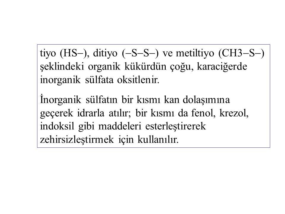 tiyo (HS), ditiyo (SS) ve metiltiyo (CH3S) şeklindeki organik kükürdün çoğu, karaciğerde inorganik sülfata oksitlenir.