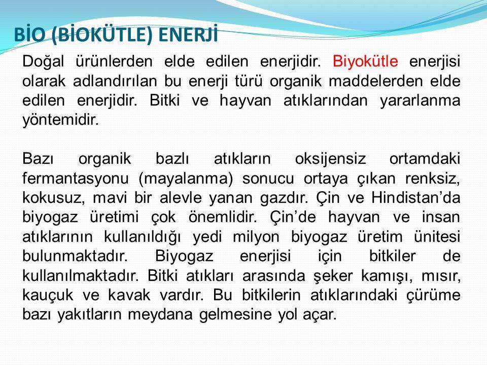 BİO (BİOKÜTLE) ENERJİ