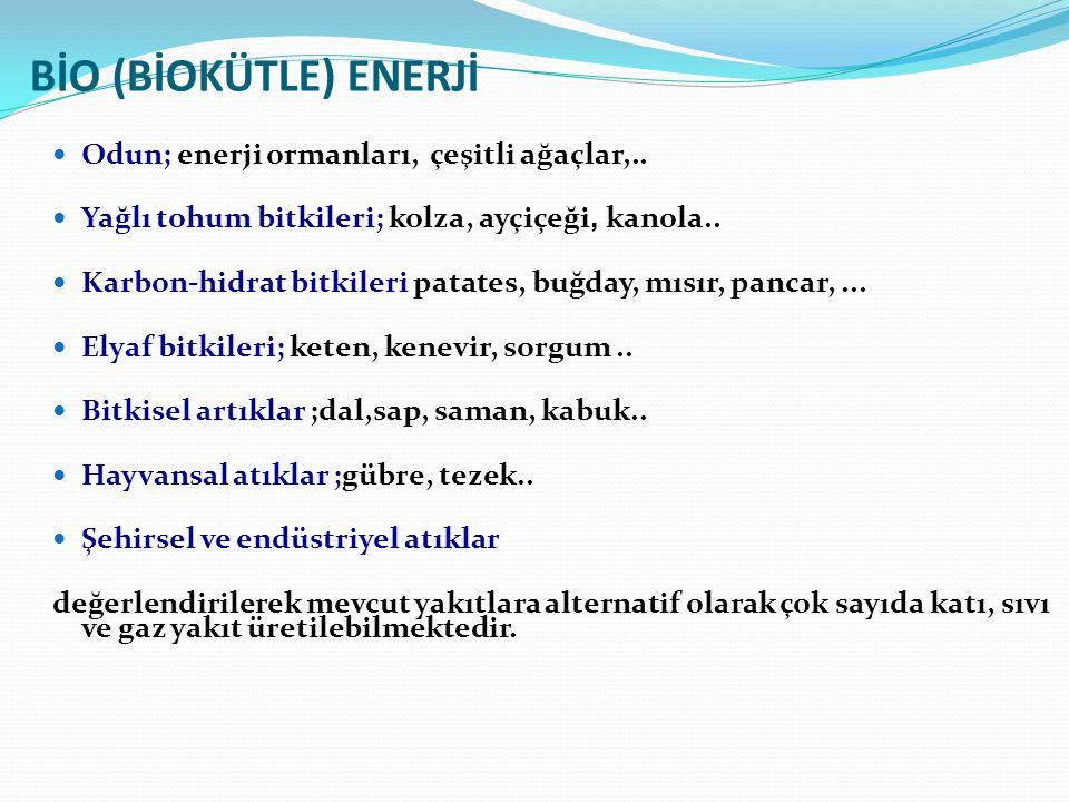 BİO (BİOKÜTLE) ENERJİ Odun; enerji ormanları, çeşitli ağaçlar,..
