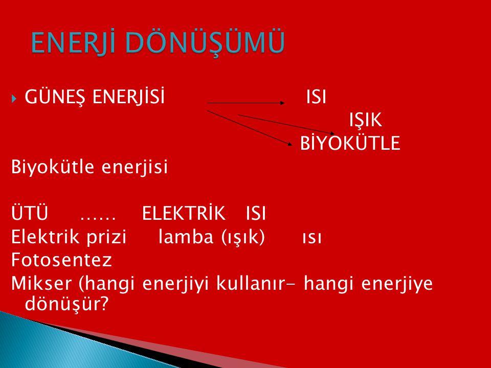 ENERJİ DÖNÜŞÜMÜ GÜNEŞ ENERJİSİ ISI IŞIK BİYOKÜTLE Biyokütle enerjisi
