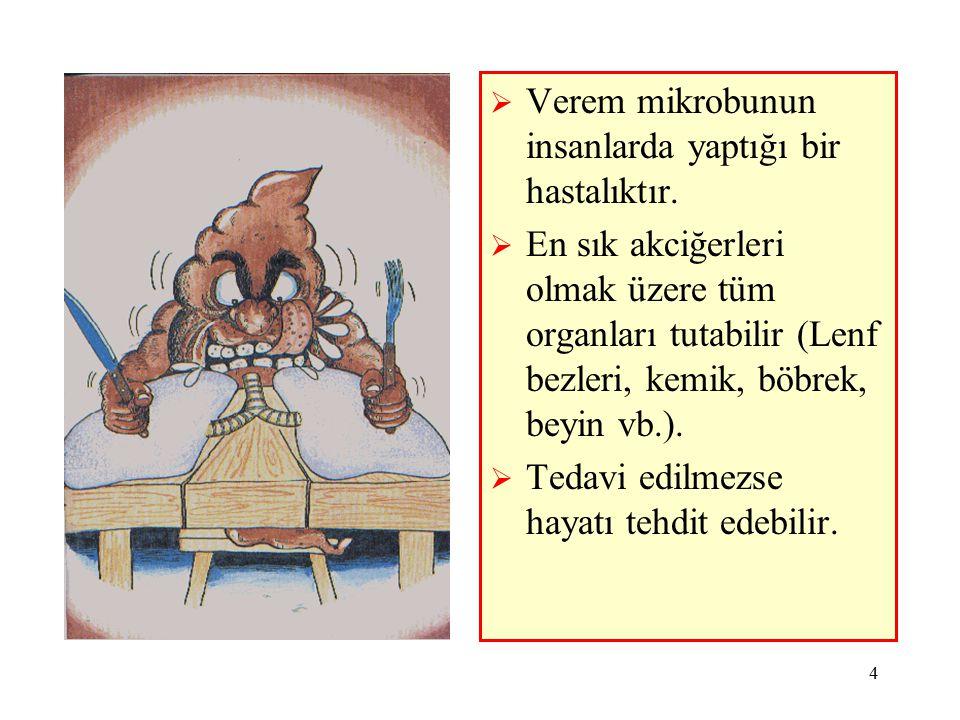 Verem mikrobunun insanlarda yaptığı bir hastalıktır.