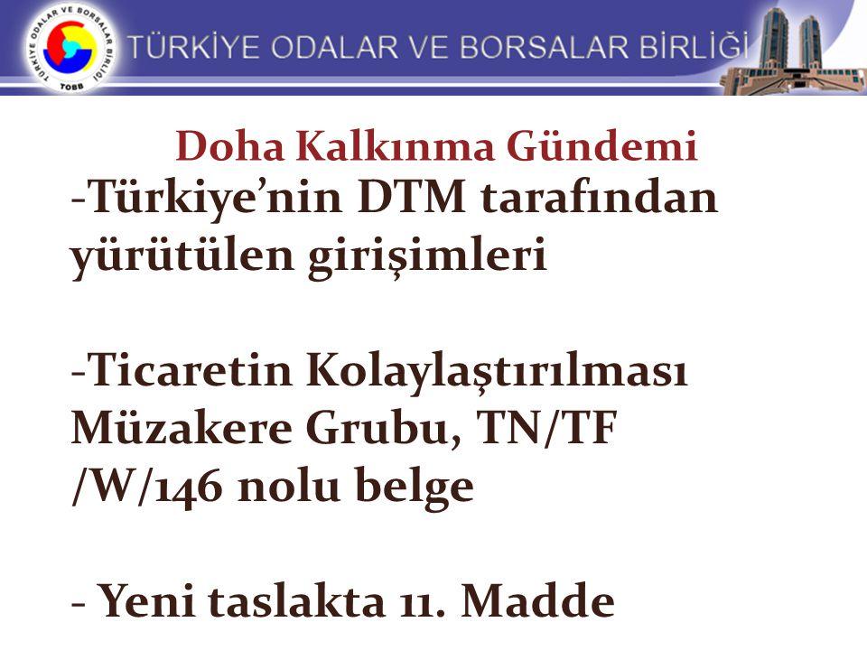 Türkiye'nin DTM tarafından yürütülen girişimleri