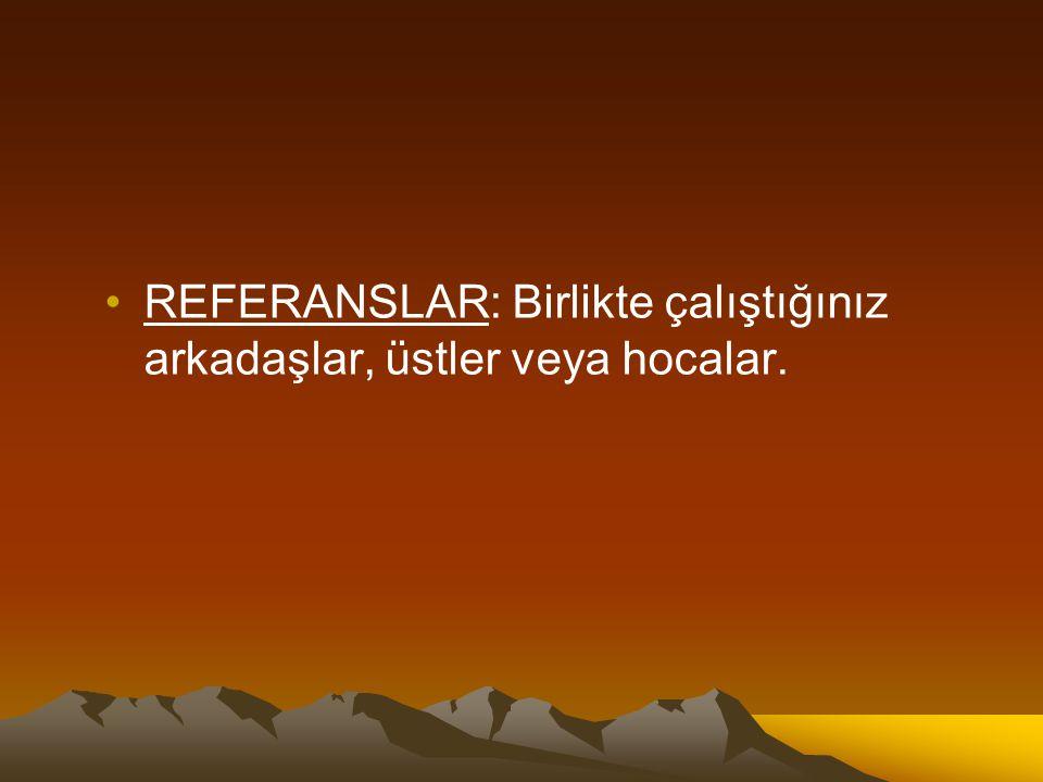 REFERANSLAR: Birlikte çalıştığınız arkadaşlar, üstler veya hocalar.
