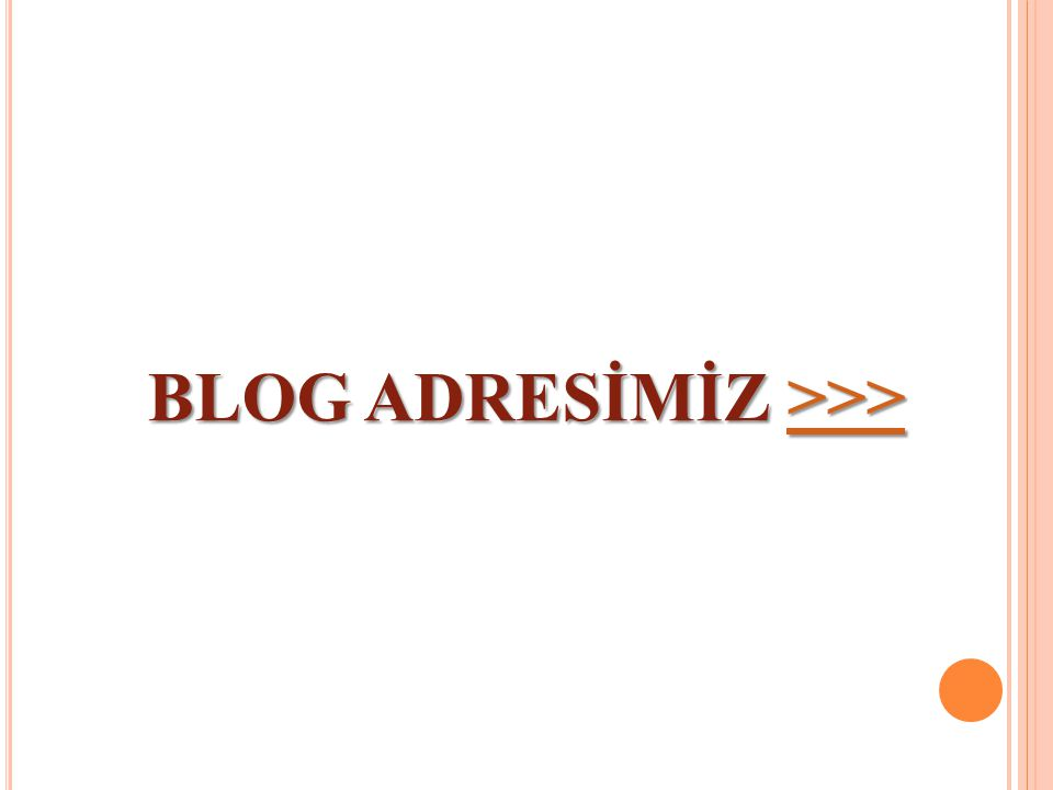 BLOG ADRESİMİZ >>>
