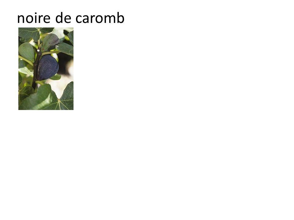 noire de caromb