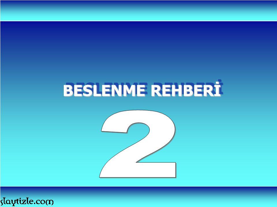 BESLENME REHBERİ 2