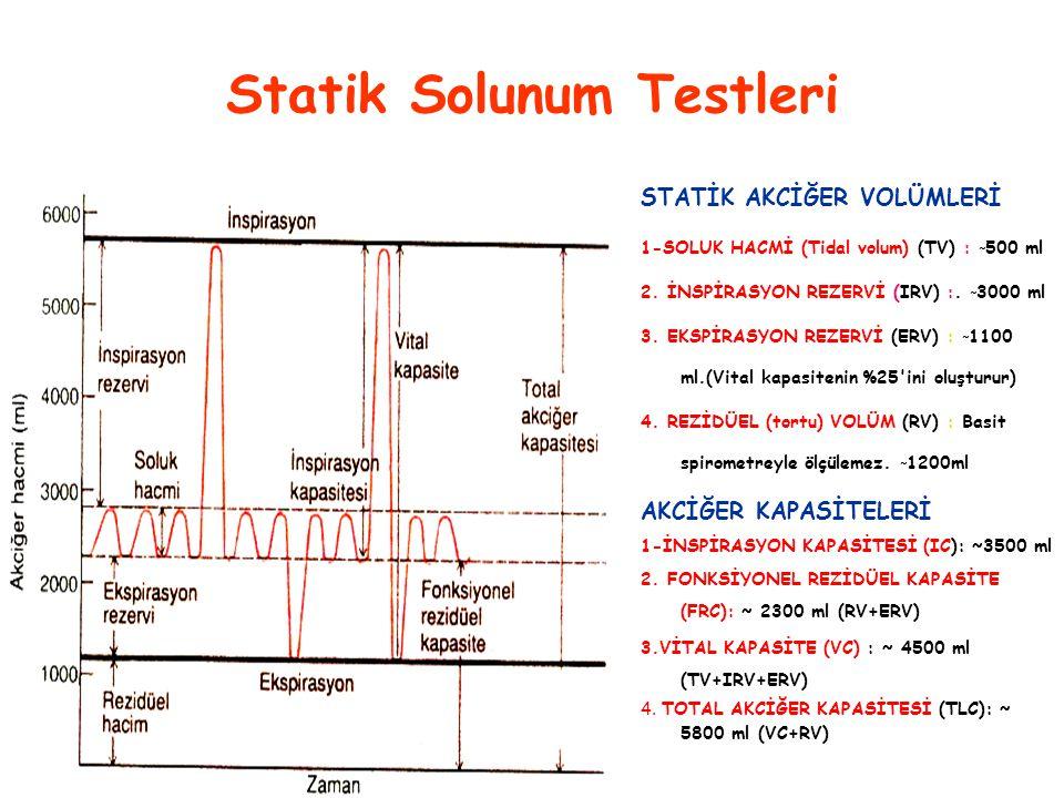 Statik Solunum Testleri