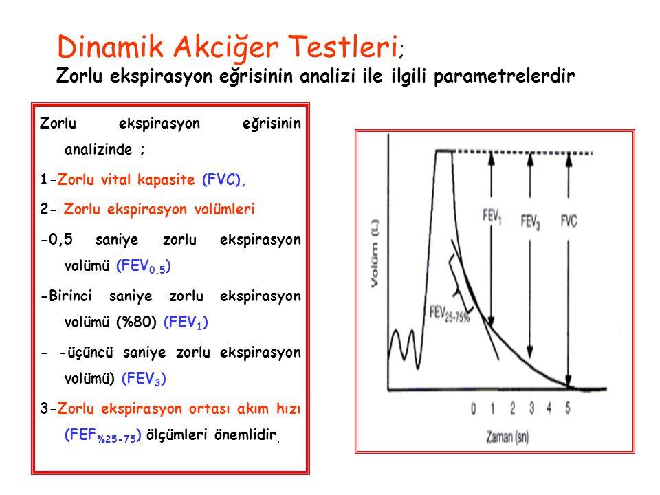 Dinamik Akciğer Testleri; Zorlu ekspirasyon eğrisinin analizi ile ilgili parametrelerdir