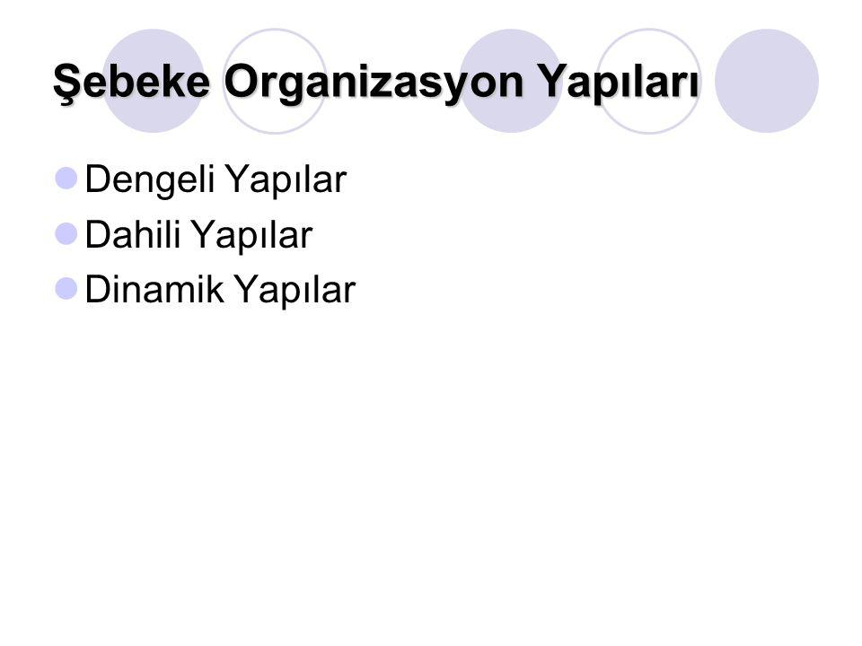 Şebeke Organizasyon Yapıları