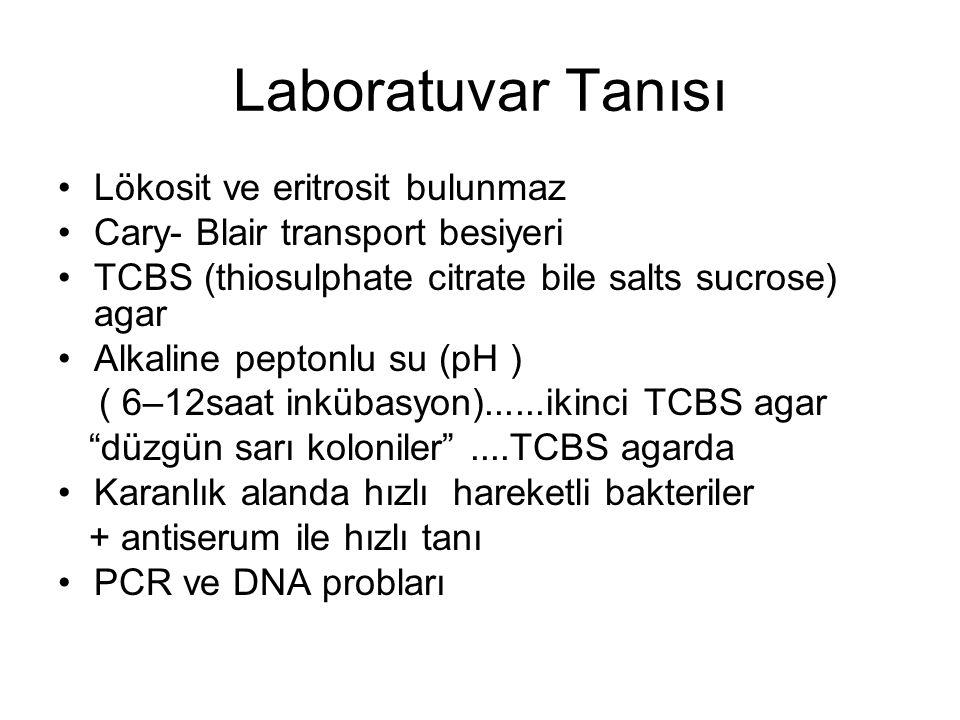 Laboratuvar Tanısı Lökosit ve eritrosit bulunmaz