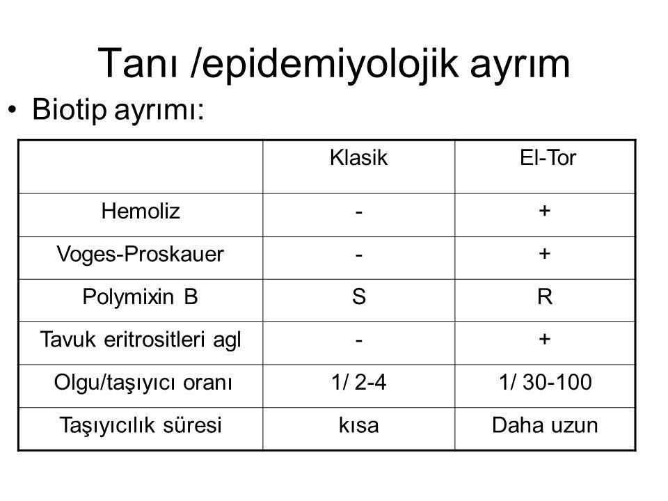 Tanı /epidemiyolojik ayrım