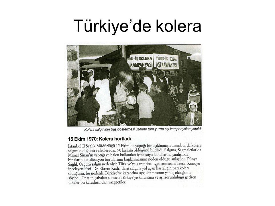 Türkiye'de kolera