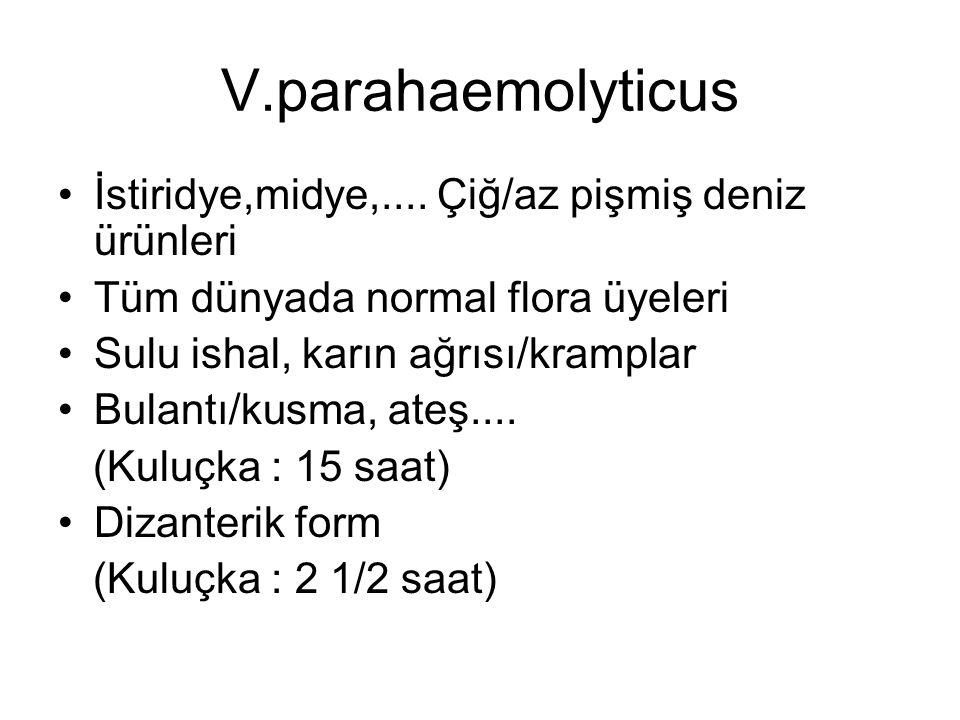 V.parahaemolyticus İstiridye,midye,.... Çiğ/az pişmiş deniz ürünleri
