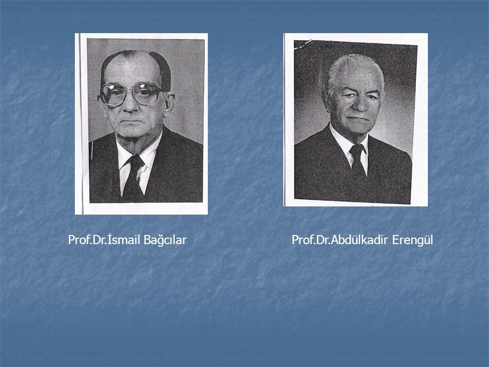 Prof.Dr.İsmail Bağcılar