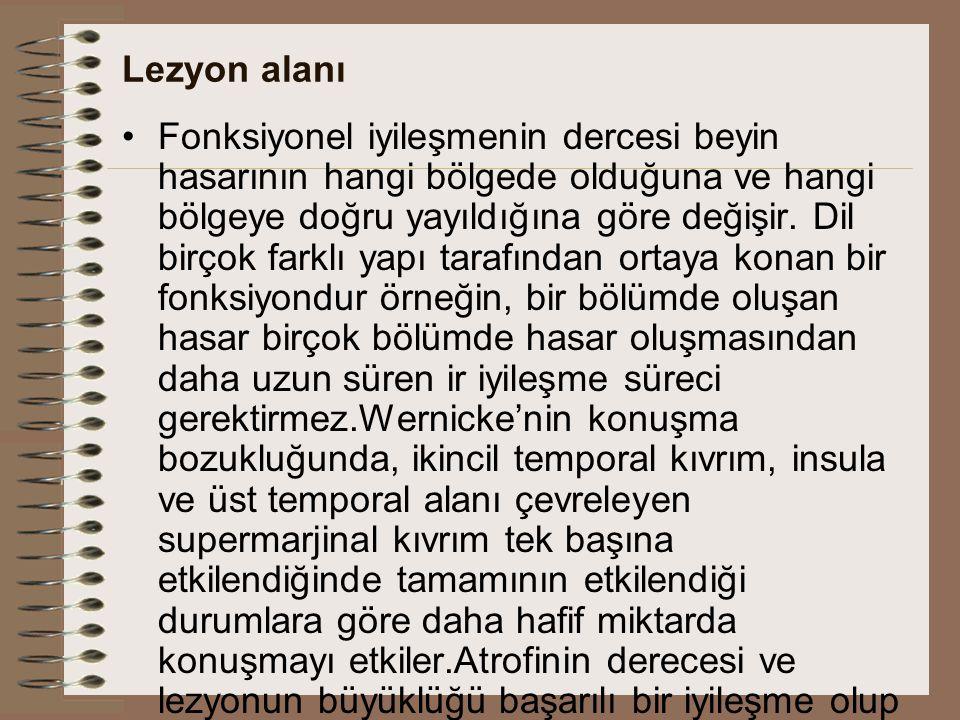 Lezyon alanı