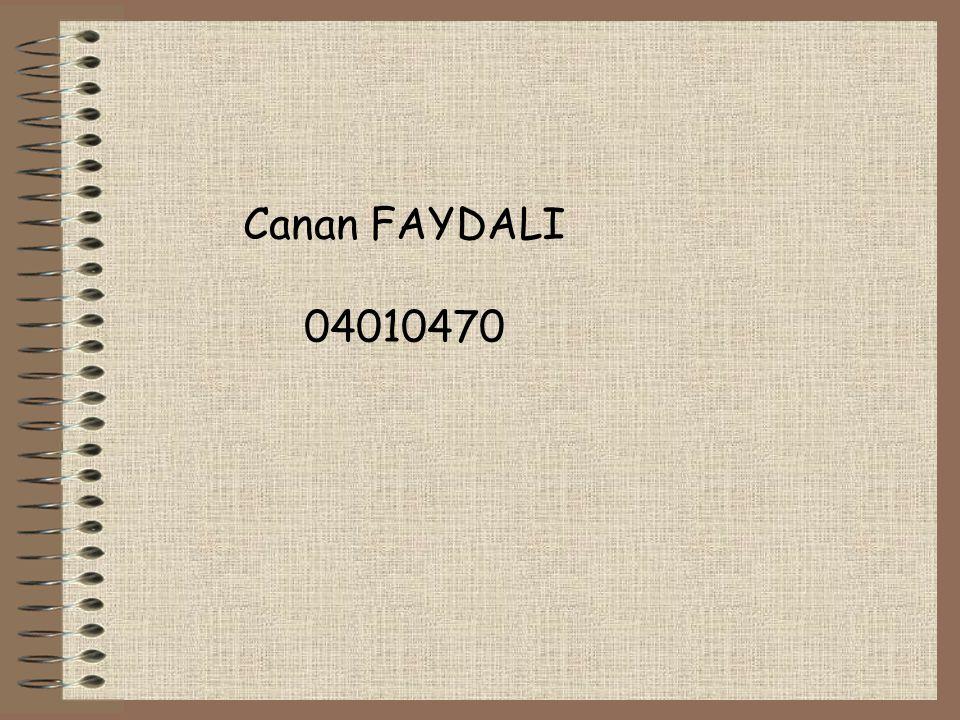 Canan FAYDALI 04010470