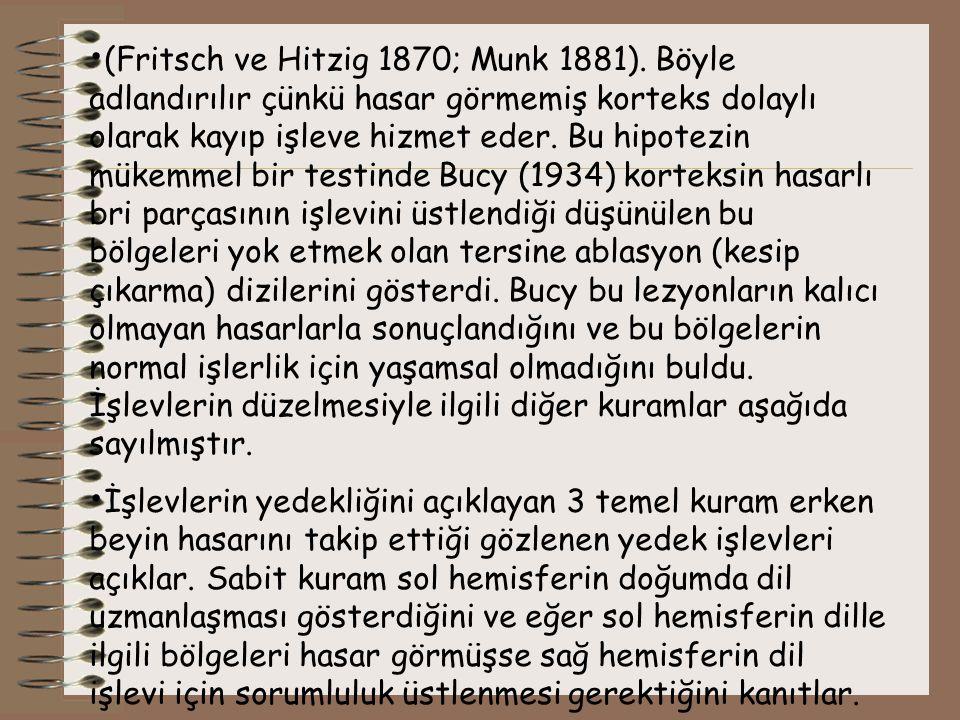 (Fritsch ve Hitzig 1870; Munk 1881)
