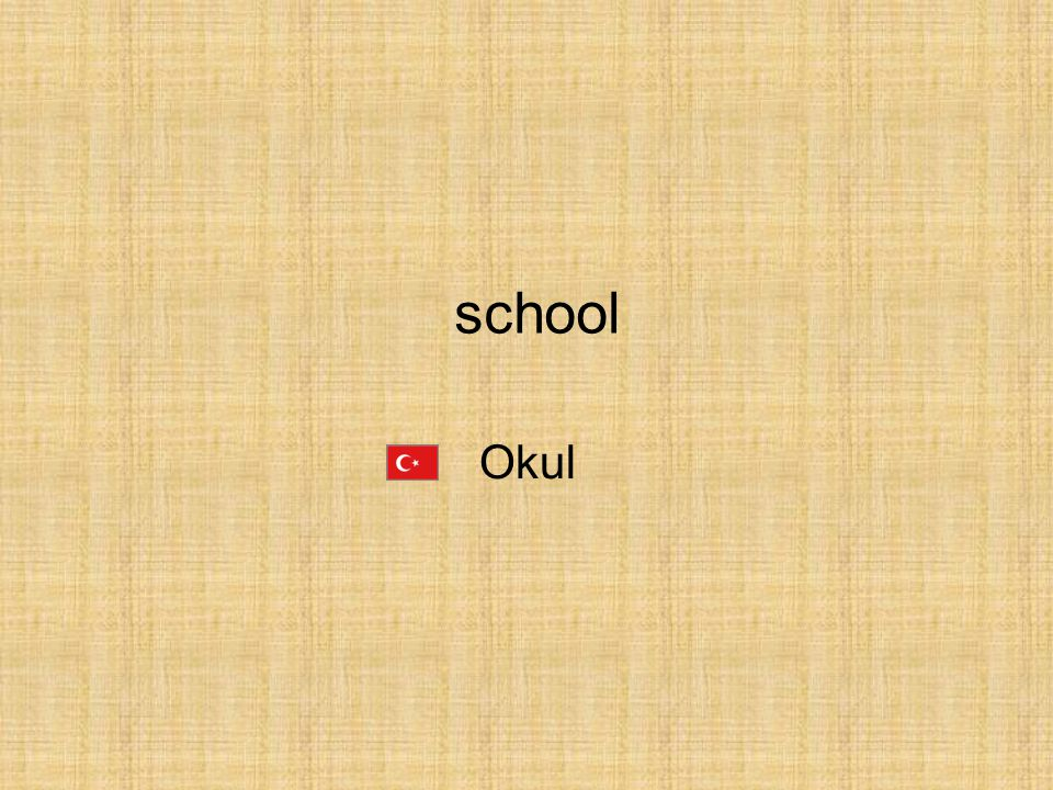 school Okul