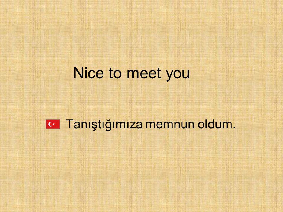 Nice to meet you Tanıştığımıza memnun oldum.