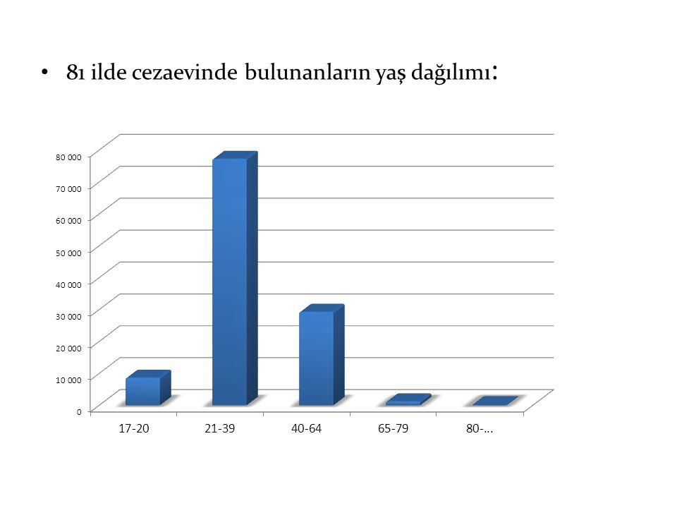 81 ilde cezaevinde bulunanların yaş dağılımı: