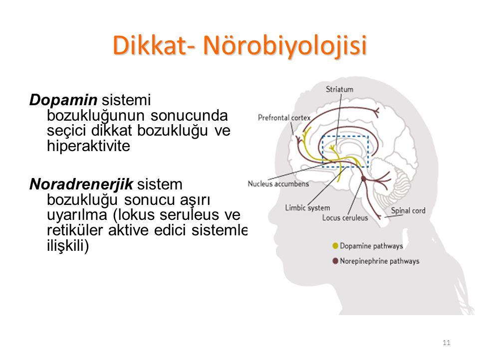 Dikkat- Nörobiyolojisi