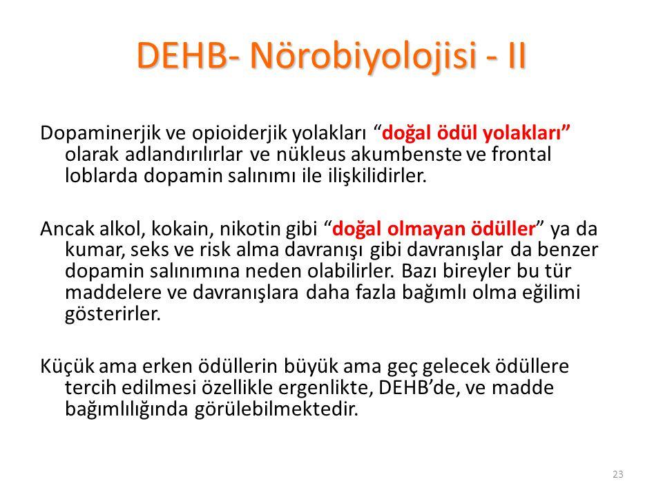 DEHB- Nörobiyolojisi - II