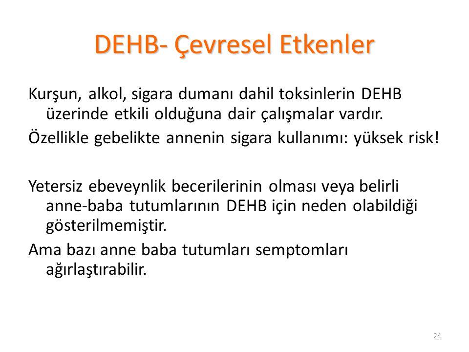 DEHB- Çevresel Etkenler