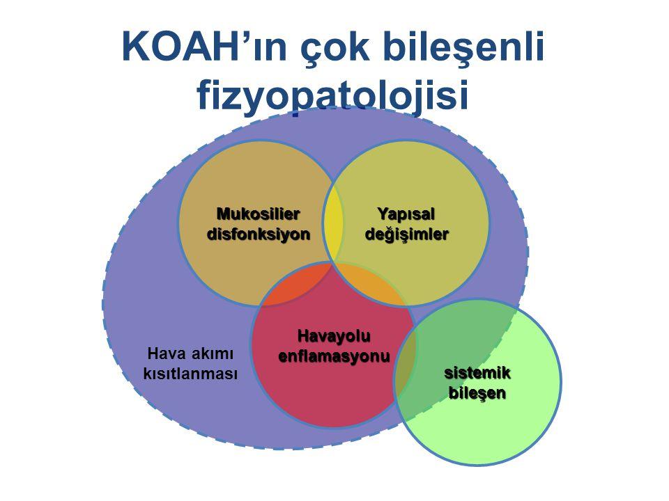 KOAH'ın çok bileşenli fizyopatolojisi