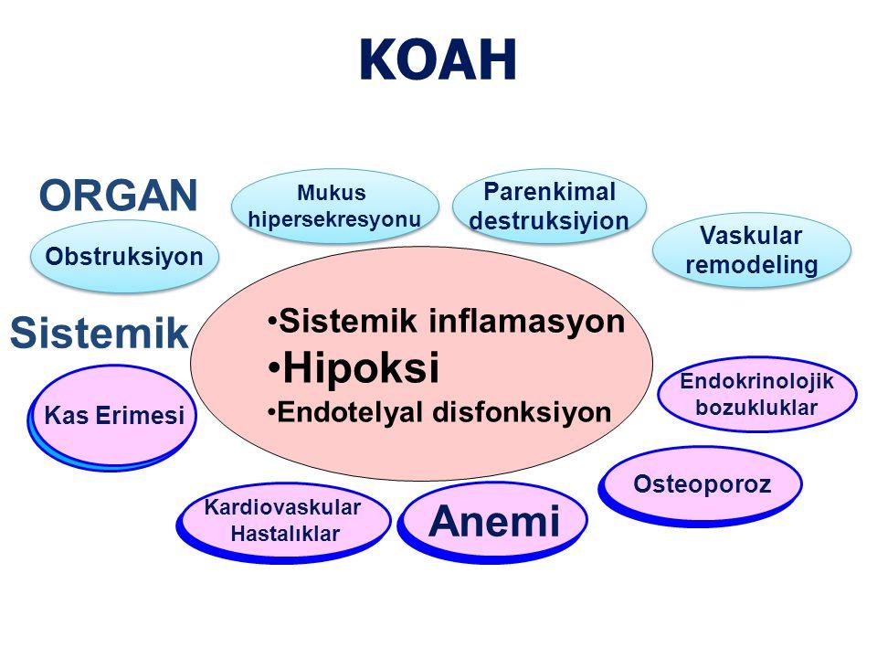KOAH ORGAN Hipoksi Sistemik Anemi Anemi Sistemik inflamasyon