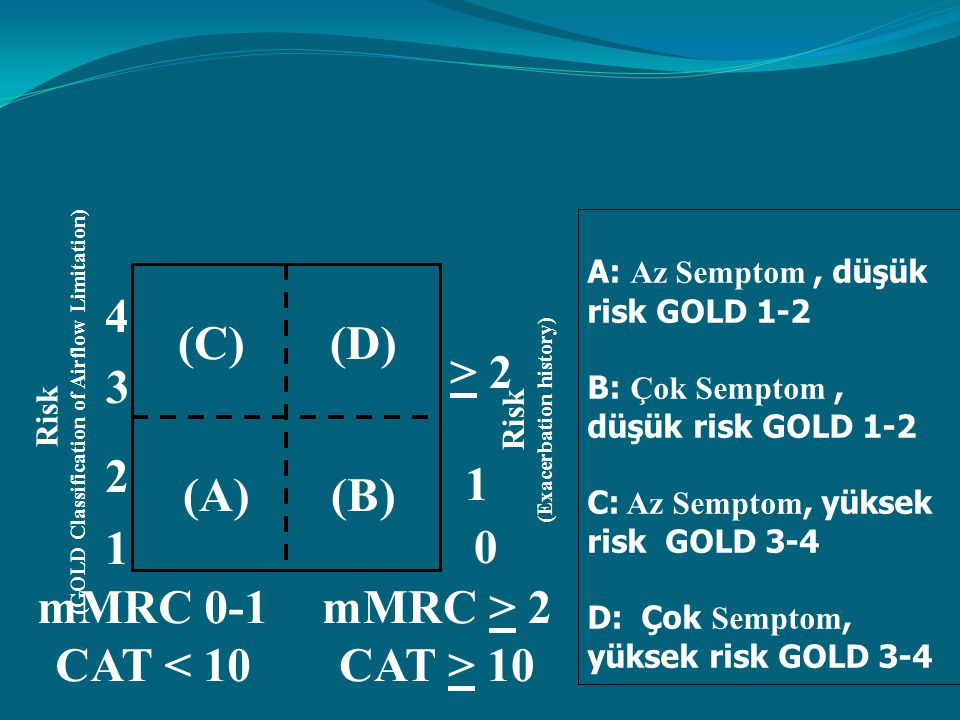 (GOLD Classification of Airflow Limitation) (Exacerbation history)