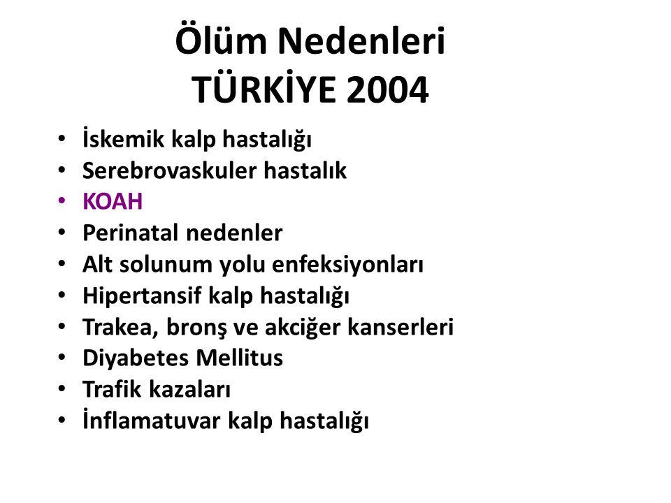 Ölüm Nedenleri TÜRKİYE 2004