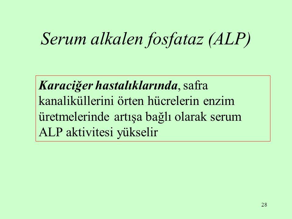 Serum alkalen fosfataz (ALP)