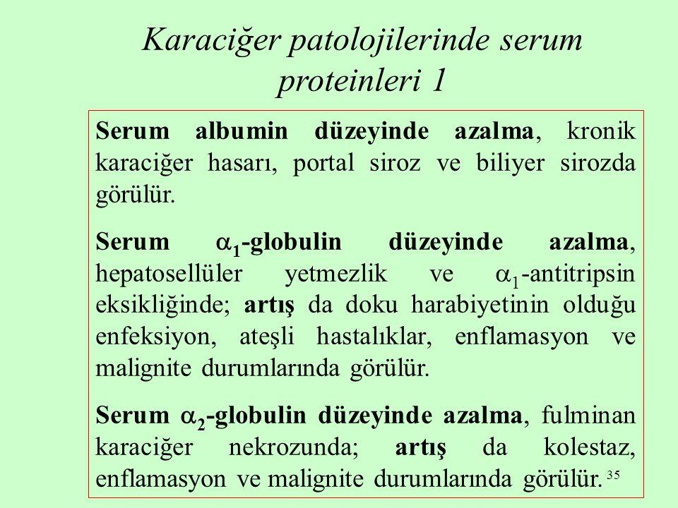 Karaciğer patolojilerinde serum proteinleri 1