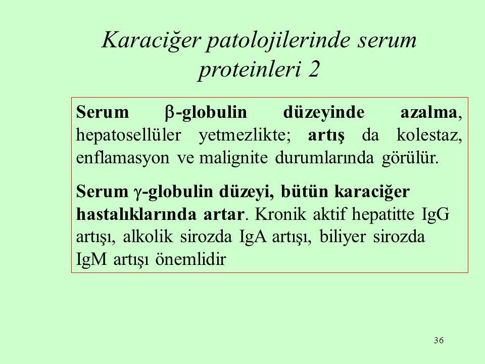Karaciğer patolojilerinde serum proteinleri 2