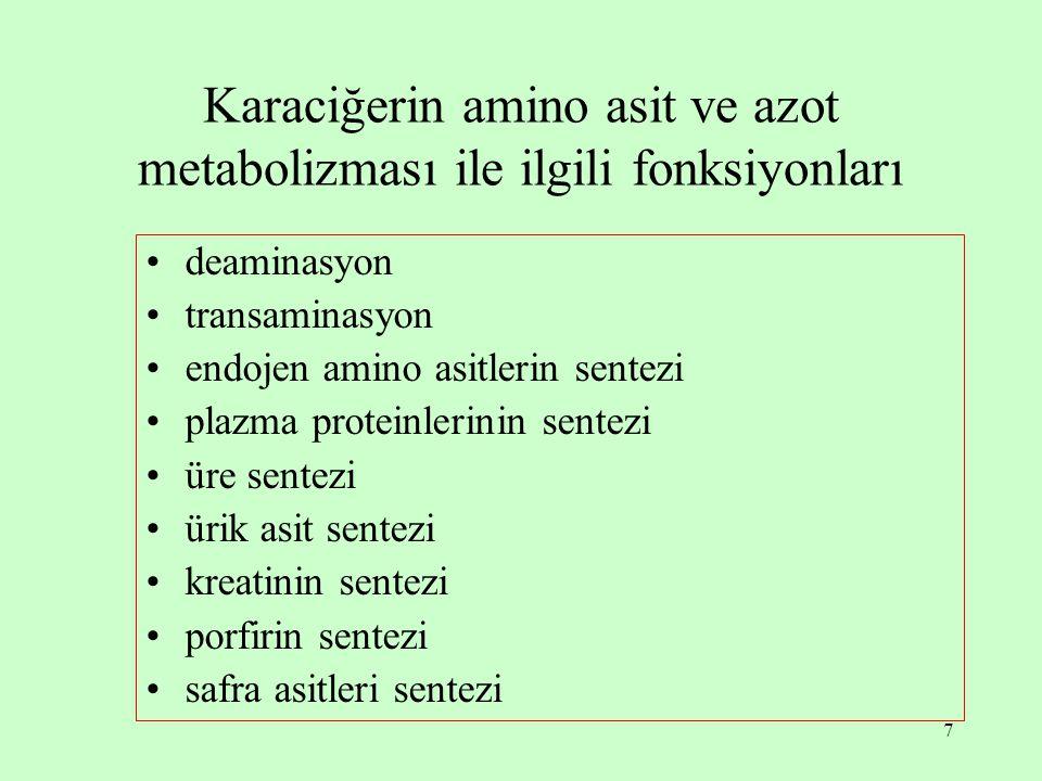 Karaciğerin amino asit ve azot metabolizması ile ilgili fonksiyonları